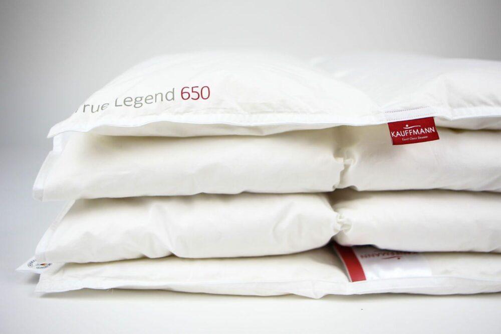 Одеяло TRUE LEGEND 650